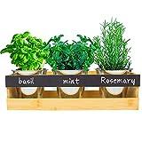 3 macetas de bambú para hierbas aromáticas con sistema de riego, ideal para hierbas frescas, suculentas y flores