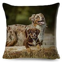 Australian Shepherd Pillow Case Cushion Cover Chidren Room Decor Pet Dog Animal (16,16X16CM)