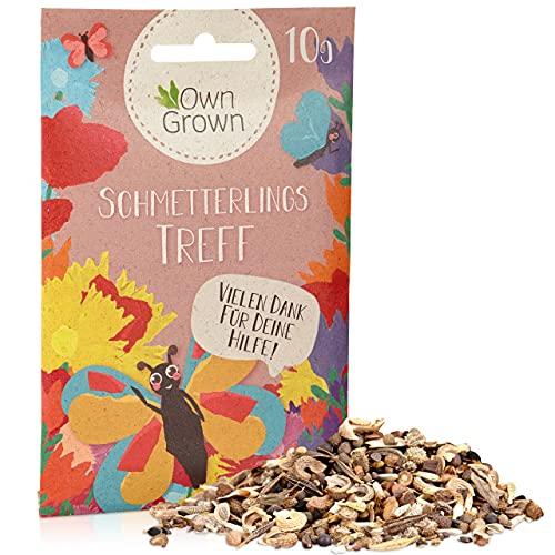 Schmetterlingstreff Blumenmischung: 10g Premium Schmetterling Blumensamen Saatgut - Insektenfreundliches Bienenweide Saatgut, Blumenwiese Samen mehrjährig und einjährig - Wildblumensamen von OwnGrown