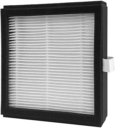 Afloia H13 Ture HEPA Filter, Air purifier Filter Replacement for Air Purifier And Dehumidifier In One (Q8)