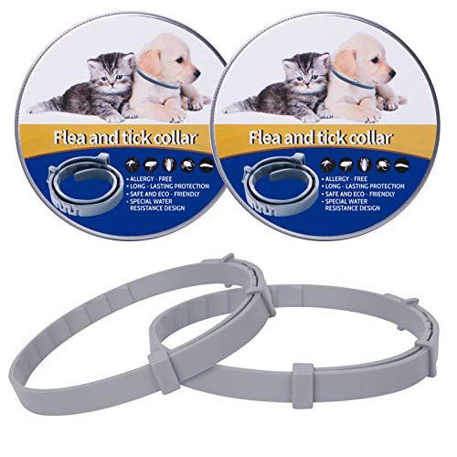 Fullsexy 2pack Collare Antipulci per Gatti, 100% di ingredienti Naturali, Trattamento e prevenzione delle pulci e delle zecche di 8 Mesi