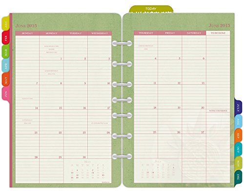 Day-Timer Flavia Monthly Desk-Size Planner Refill 2015, 5.5 x 8.5 Inch Page Size (09626)