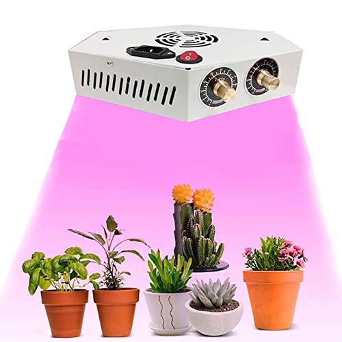 ZJING 1000W LED Pflanzenlampe Pflanzenlicht Einstellbare Vollspektrum Wachsen COB Grow Light Mit Seilaufhänger Für Zimmerpflanzen Gewächshaus Hydroponic Gemüse Und Blumen