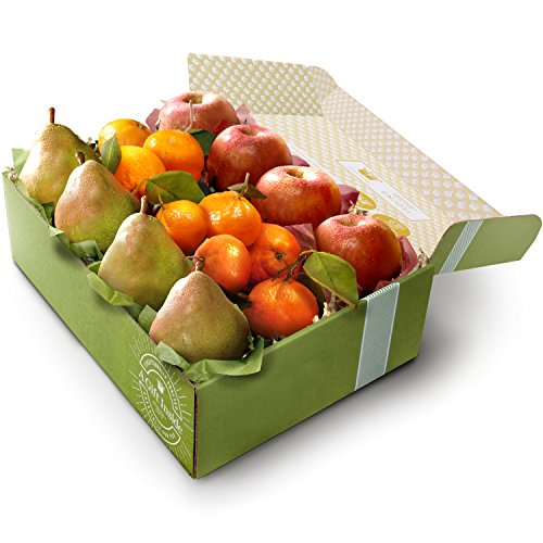 Festive Holidays Trio Fruit Gift Box