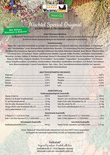 Hühner-Spezial Futter mit Blüten und Kräutern - 4