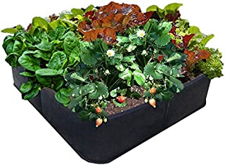 Victory 8 Fabric Raised Bed 2 ft X 2 ft Garden GREEN GARDENING Raised Bed, AeroFlow Fabric POT EZ-GRO SQUARE