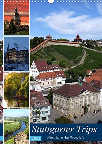 Stuttgarter Trips (Wandkalender 2021 DIN A3 hoch)