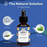 IMG-2 catly spray antipulci gatto cucciolo