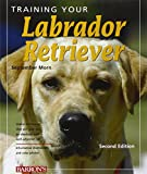 Labrador Retriever training guide book