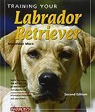 Training Your Labrador Retriever: 2nd Edition (Training Your Dog) (Training Your Dog Series)