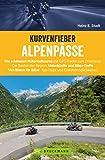 Kurvenfieber Alpenpässe: Motorradreiseführer für die Alpen: Zehn Motorradtouren von Bikern für...