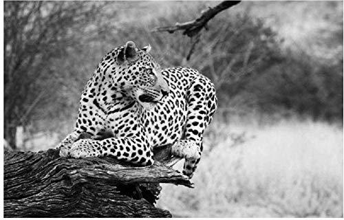 Ilustración De Leopardo En Blanco Y Negro Rompecabezas De Madera DIY Desafío Cerebral De 98 Piezas para Niños Juegos De Interior Decoración De Pared Estimular La Creatividad Regalo De Arte