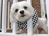 Puppy Bumpers Black and White Check 10 to 13'