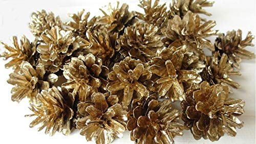 25 conos de pino dorado, bricolaje, modelado de coronas, composiciones de cuento de hadas de Navidad.