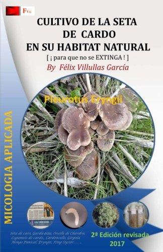 Cultivo de la Seta de Cardo en su habitat natural: Asociacion del hongo Hongo Pleurotus Eryngii y la planta Eryngium Campest