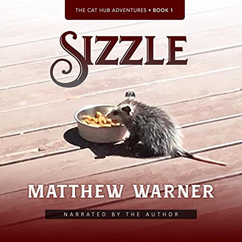 Sizzle Audiobook By Matthew Warner cover art