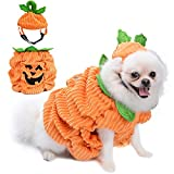 Dog Halloween Costume,Dog Halloween Costume with Pumpkin Hat Design Creative Funny Halloween Dog Outfits for Small Medium Dog