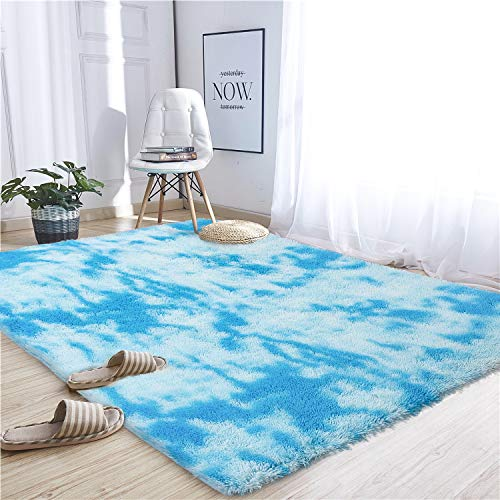 Noahas Abstract Shaggy Rug for Bedroom Ultra Soft Fluffy Carpets for Kids Nursery Teens Room Girls Boys Thick Accent Rugs Home Bedrooms Floor Decorative, 5 ft x 8 ft, Sky Blue