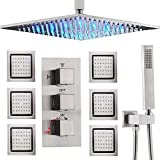 AYIVG Thermostatic LED 16 Inch Ceiling Rainfall Shower System...