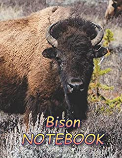 Bison NOTEBOOK: notebooks and journals 110 pages (8.5