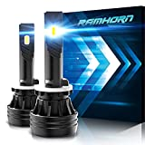 RAMHORN 880 LED Bulbs,10000Lm 6500K Cool White 890 893 899 Conversion Kit of 2