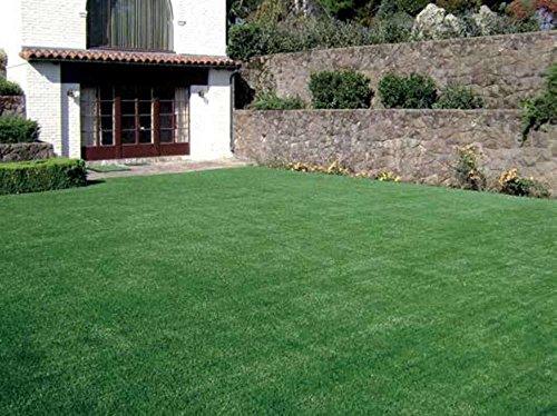 VERDELOOK Sempreverde® Erba Artificiale, 2X20 M, Arredo Giardino Decorazioni
