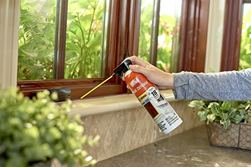 Ortho Home Defense Insect Killer for Cracks & Crevices - Spray Foam Kills Ants, Cockroaches, Fleas, Centipedes, Crickets, Boxelder Bugs & Other Listed Common Insects, Long-Lasting, 16 oz.