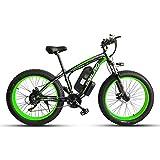 JUYUN Bicicleta Eléctrica 26 Pulgadas 350W 48V E-Bici de Montaña con Sistema de Transmisión de 21 Velocidades, Beach Cruiser Hombre Mujeres, Batería de Litio 15Ah,Black Green