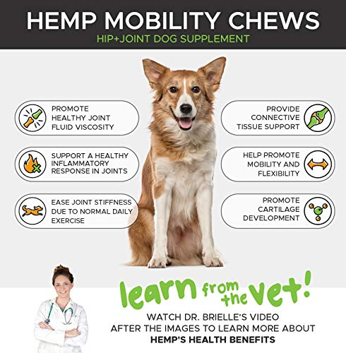 PetHonesty Hemp Hip And Joint Supplement For Dogs