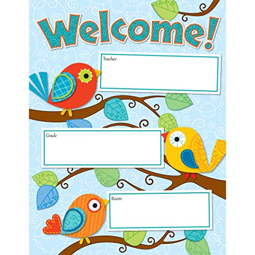 Carson Dellosa Boho Birds Welcome Chart (114190) (Welcoming Activity For The First Day Of School)