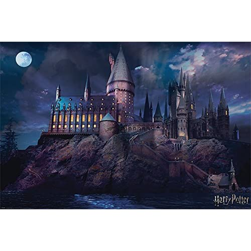 Poster (10c) Harry Potter Hogwarts (61x91,5)