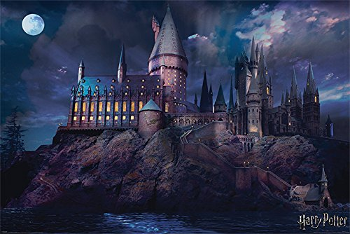 Wizarding World Harry Potter - Póster de Hogwarts, 61 x 91,5 cm, Mult