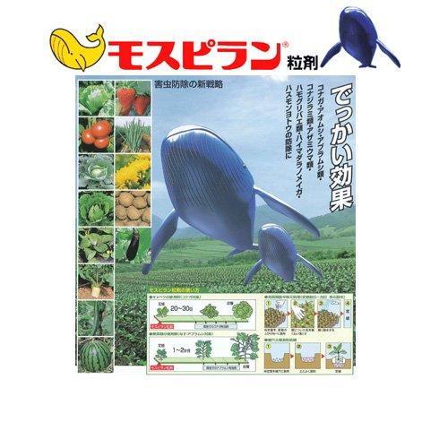 殺虫剤 モスピラン粒剤 500g 【日曹・農薬・害虫防除】