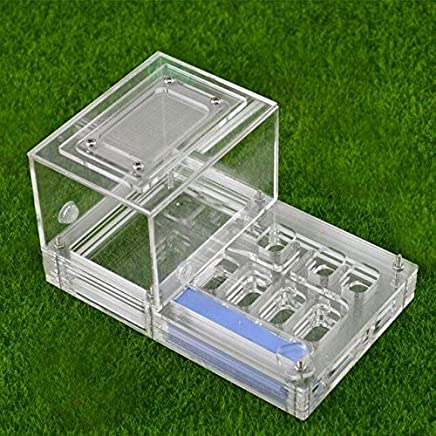 KDGPUM New Design DIY with Feeding Area Ant Nest Ant Farm Acrylic Villa Pet Mania for House Ants Insect Ant Workshop : 07