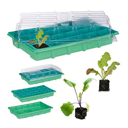 relaxdays Mini Serre d'intérieur 24 Compartiments Couvercle semis terrine Plants Fleurs légumes 38 x 24,5 cm, Vert