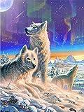 HQQK Pintar por Numeros Adultos Niñost, Lobo en la Nieve bajo la Aurora DIY Pintura al óleo Pintura por Números Kit de Pintura al óleo sobre Lienzo,Decoración Hogareña-Sin Marco -16x20inch