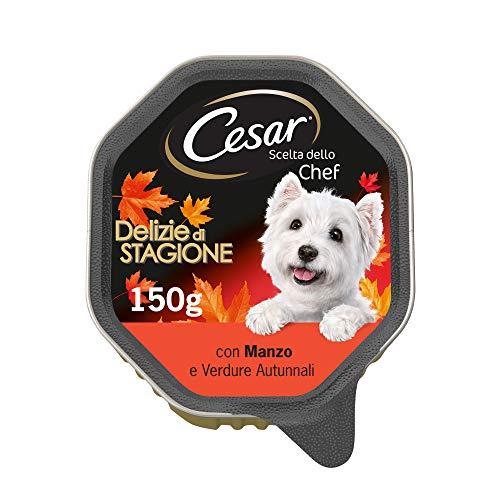 Cesar Scelta dello Chef Cibo per Cane, Delizie di Stagione con Manzo e Verdure Autunnali 150 g - 14 Vaschette