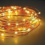 TONY STARK 50LED 5M Copper String USB LED Lights, Fairy,Garden, Decoration Party Wedding Diwali Christmas Copper String Lights (50 LED 5m)