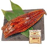 特大 うなぎ 2尾 炭火焼き 真空パック ( 約350-400g以上) 蒲焼 土用の丑 お中元 ギフト 蒲焼き 鰻 ウナギ (特大 2尾)