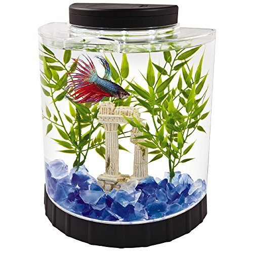 Tetra LED Half Moon aquarium Kit 1.1 Gallons, Ideal For Bettas, Black, 4.6 x 9.1 x 9.9 Inches...