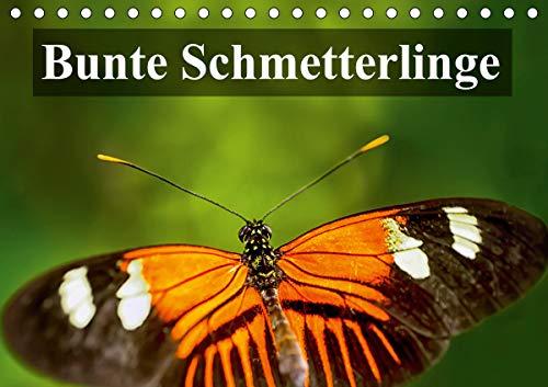 Bunte Schmetterlinge (Tischkalender 2021 DIN A5 quer)