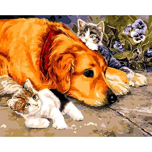 Wzjxzsynl Digitale canvas, olieverfschilderij om zelf te maken, voor kleine katten en rabarbers, voor kinderen, volwassenen, beginners en woonkamer, decoratie als partycadeau