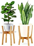 GreeMoose Plant Stand Mid Century Indoor, Bamboo, Wooden, Adjustable (8-12 Inch), Tall Modern Plant Holder X (Planter Not Included)