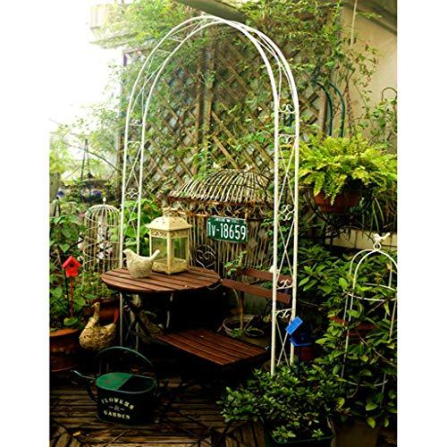 Arco Jardin de Metal, Cenador de Jardín para Plantas Trepadoras, Arcos de Rosas, 115 Cm X 12 Cm X 240 Cm (Negro, Blanco)