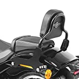 Respaldo Sissy Bar Compatible para Harley Davidson Softail Low Rider/S 18-21 Negro CSS