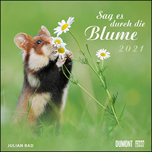 Sag es durch die Blume 2021 – Hamster, Eichhörnchen, Zwiesel in Nahaufnahme – Wandkalender mit Spiralbindung – DUMONT Quadratformat 24 x 24 cm
