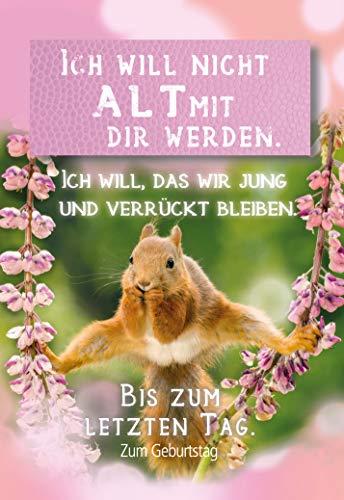 Geburtstagskarte Eichhörnchen, Geburtstagskarte lustig, im Format DIN B6 176 x 125 mm, Klappkarte inkl. Umschlag, Motiv: Eichhörnchen