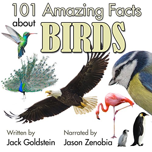 101 Amazing Facts About Birds audiobook cover art