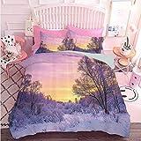 Hiiiman Home Decor Textil Invierno Paisaje con Puesta de sol y árboles congelados Hielo, Clima Blizzard Cold Days Image (3 piezas, tamaño extra grande) 1 funda de edredón y 2 fundas de almohada