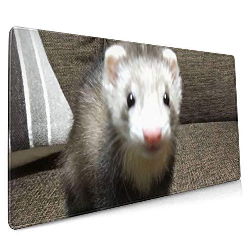 Lindo hurón en el sofá Alfombrilla de ratón Grande Alfombrilla de Teclado Alfombrilla de ratón de Juego de Ordenador multipropósito extendido Largo